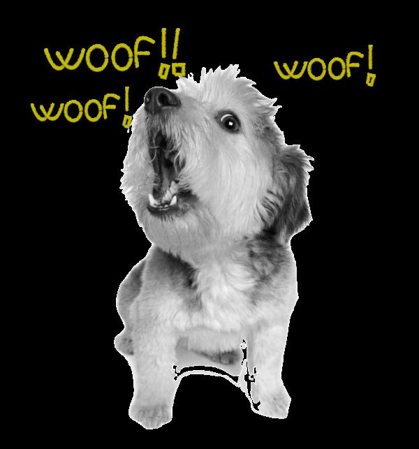perro ladrador