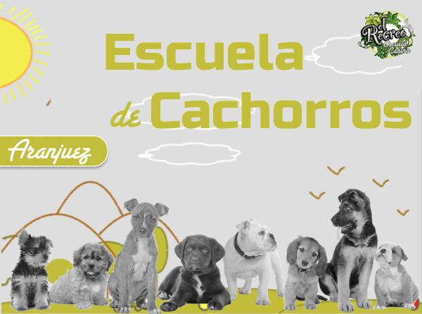Cursos de Educación canina y adiestramiento de cachorros en Aranjuez